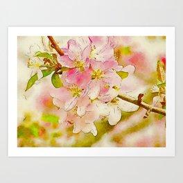 Spring Botanical CrabApple Blossoms Waterlogue Art Print