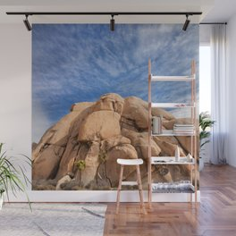 Joshua Tree Rocks Wall Mural