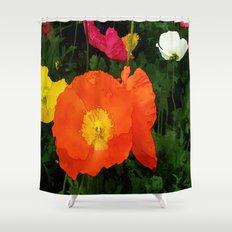 Poppies One Shower Curtain