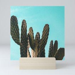Cactus Photography Print {1 of 3} | Teal Succulent Plant Nature Western Desert Plants  Design Decor Mini Art Print