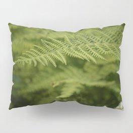Jane's Garden - Fern Fronds Pillow Sham