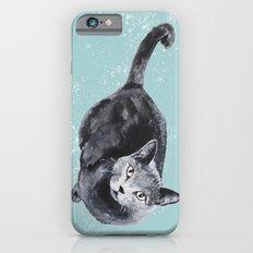 russian blue cat Slim Case iPhone 6s