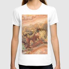 Idaho Gem Stone 13 T-shirt