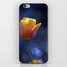 Tulip Solo 1259 iPhone & iPod Skin