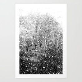 Snow in early fall(3) Art Print