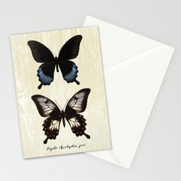 Butterfly10_Papilio Ascalaphus pair Stationery Cards