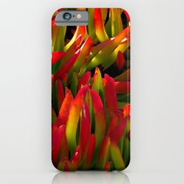 colorful plant iPhone Case