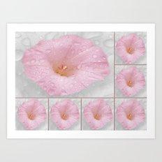 Beautiful Flower Collage Art Print