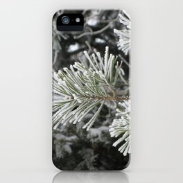 Frosted pine iPhone Case
