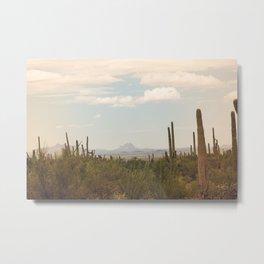 Down Desert Roads, II Metal Print