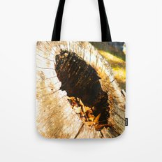 Fall Graveyard Tote Bag