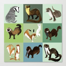 Best Nine  Mustelids from Spain Canvas Print