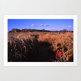 Corn Maize  Art Print