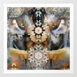 Organza Lampshade Art Print