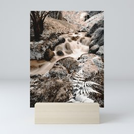 Stream Mini Art Print