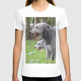 #Wolfhounds #big #meek #gray #giants T-shirt