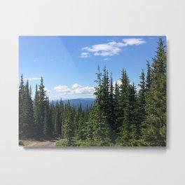 Pines 2 Metal Print
