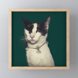 Snob kitty Framed Mini Art Print