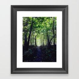 A Hidden Path Framed Art Print
