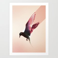 Electric Bird Art Print
