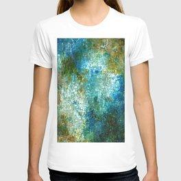 TERRA FIRMA T-shirt