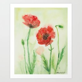 Soft Red Poppies Art Print