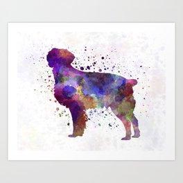 Brittany Spaniel in watercolor Art Print