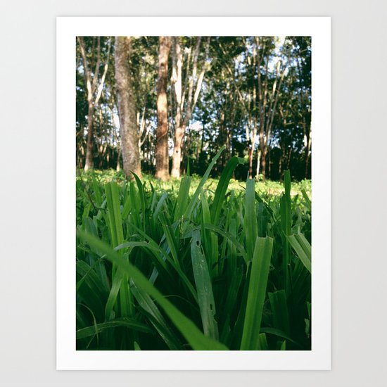 Bed of Grass Art Print