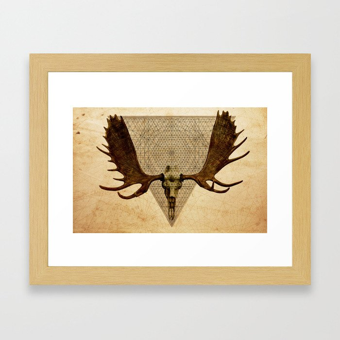Anteocularis VI Framed Art Print