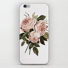 Three English Roses iPhone Skin