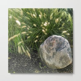 A Rock And Some Cattails Metal Print
