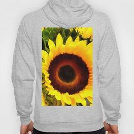 Sunflower 16 Hoody