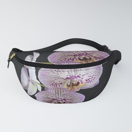 Phalaenopsis Orchid Fanny Pack