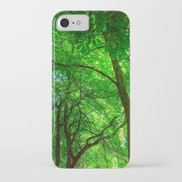 Maple Canopy, Dreamy and Magical Light iPhone Case