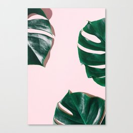Green monstera leaves on pink ink Leinwanddruck