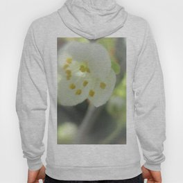Blossom Time Hoody