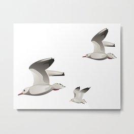 Flying Seagulls Metal Print