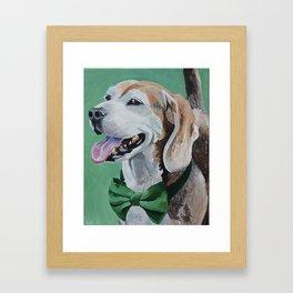 Beagle in a Bow Tie Framed Art Print