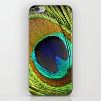 feathers iPhone & iPod Skins featuring feathers by mark ashkenazi
