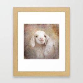Baby Lamby Framed Art Print