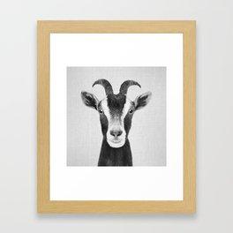 Goat - Black & White Framed Art Print