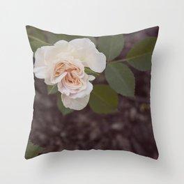 The Last Blossom (Autumn Rose) Throw Pillow