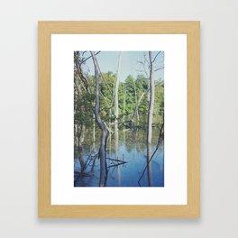 Les Landes (3) Framed Art Print