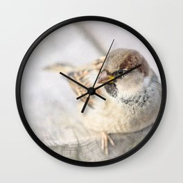 Sparrow - After The Transatlantic Wall Clock