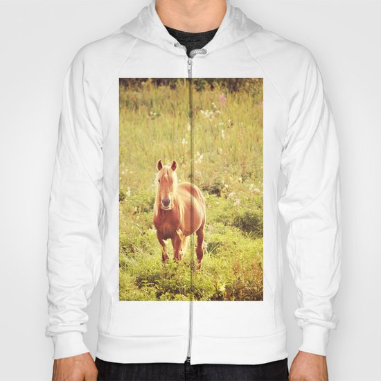 All the Pretty Horses Hoody
