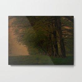 Tree Landscape row Metal Print