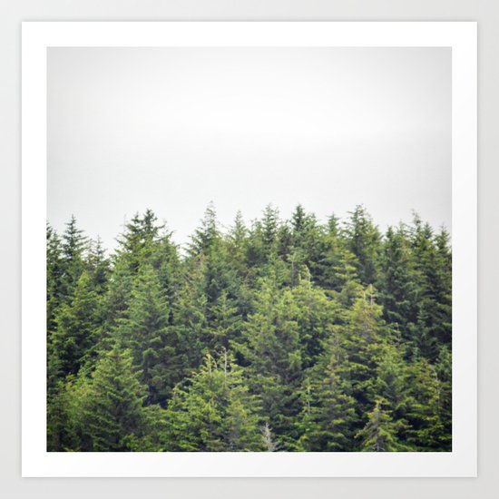 Verdant Tree Tops Art Print