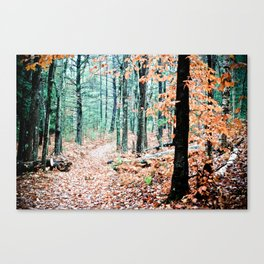 Autumn Woodland Canvas Print