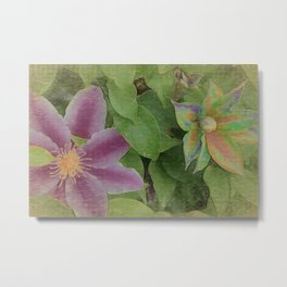 The beauty of color in clematis Metal Print