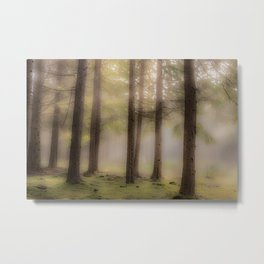 Dreamy wilderness #2 Metal Print